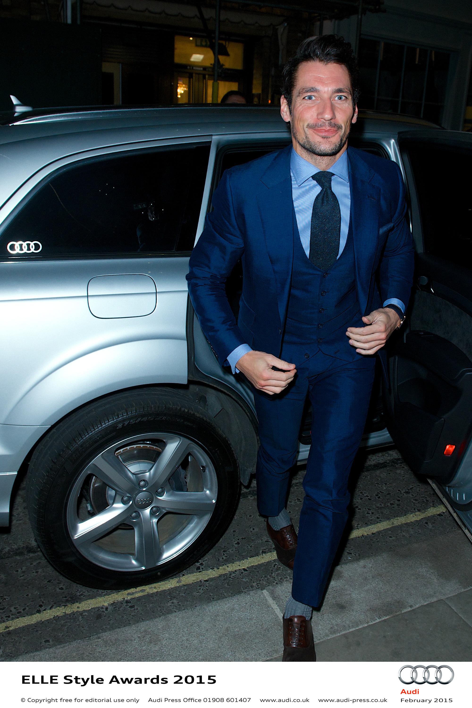 David Gandy - Elle Style Awards